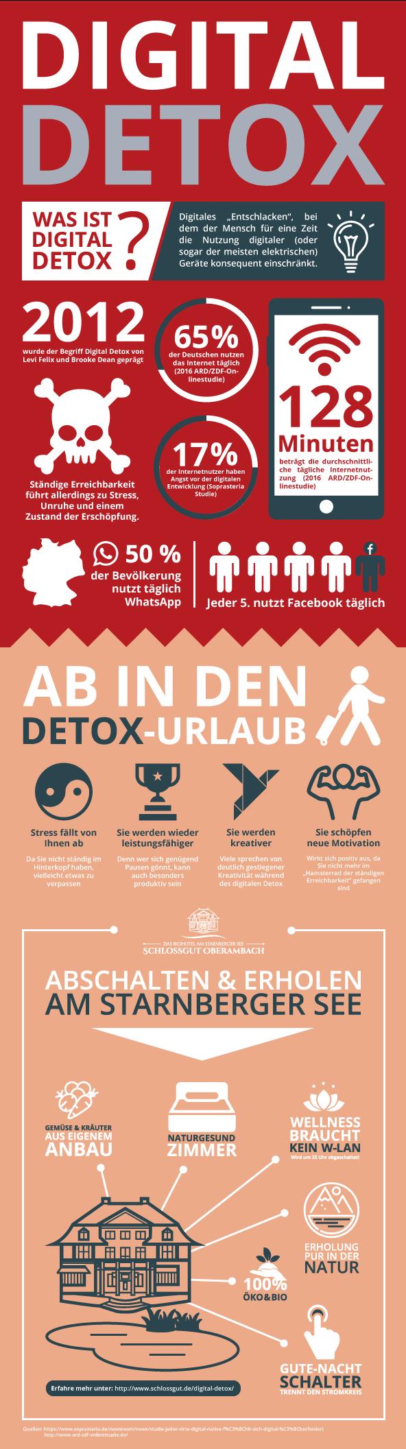 Digital Detox Infografik