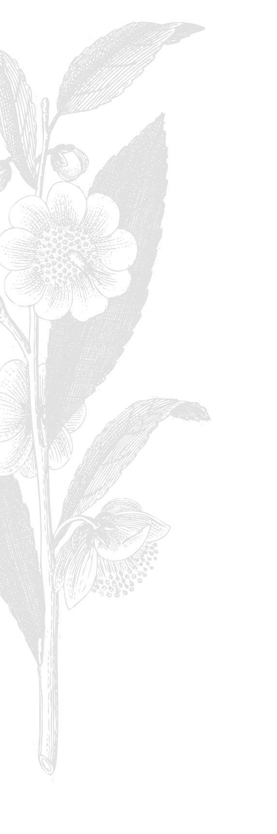 flowers L unten