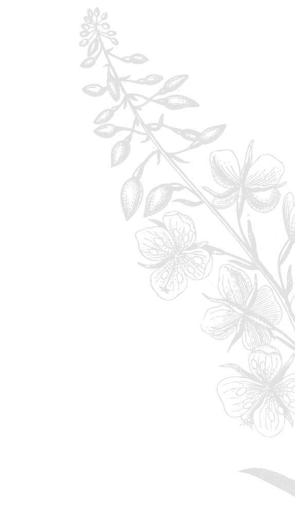 flowers R oben
